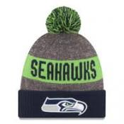 Seattle Seahawks Heather Gray 2016 Sideline Official Sport Knit